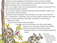 Skazki-Druznogo-lesa-3