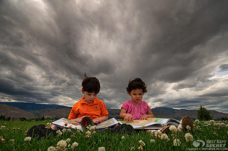 Чтения и развитие эмпатии