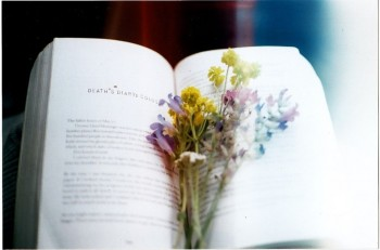 book-smell-6
