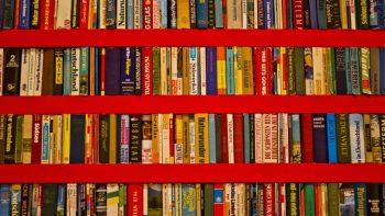 чтение книг мальчиками с самого раннего возраста связано с большим уровнем доходов в их взрослой жизни